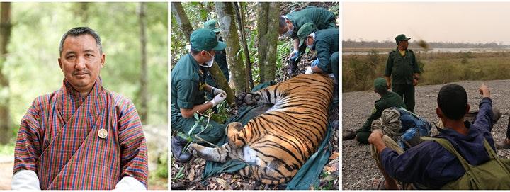Tiger conservation in Bhutan
